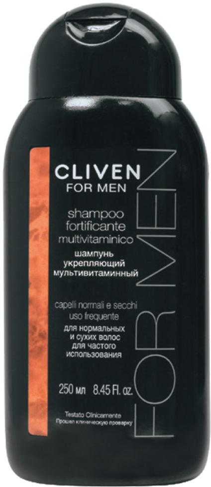Cliven Шампунь укрепляющий мультивитаминный для нормальных и сухих волос 250мл dikson укрепляющий шампунь с гидрализованными протеинами риса для нормальных волос 1000 мл