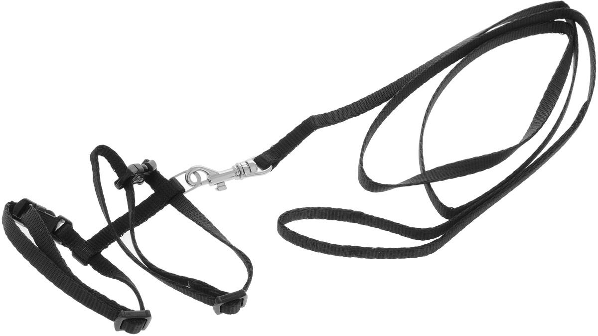 Шлейка для котят Trixie, цвет: черный4182_черныйШлейка Trixie, изготовленная из прочного нейлона, подходит для кошек и котят. Крепкие пластиковые элементы делают ее надежной и долговечной. Обхват шлейки регулируется при помощи пряжек. В комплект входит поводок из нейлона, который крепится к шлейке с помощью металлического карабина. Шлейка - это альтернатива ошейнику. Правильно подобранная шлейка не стесняет движения питомца, не натирает кожу, поэтому животное чувствует себя в ней уверенно и комфортно.