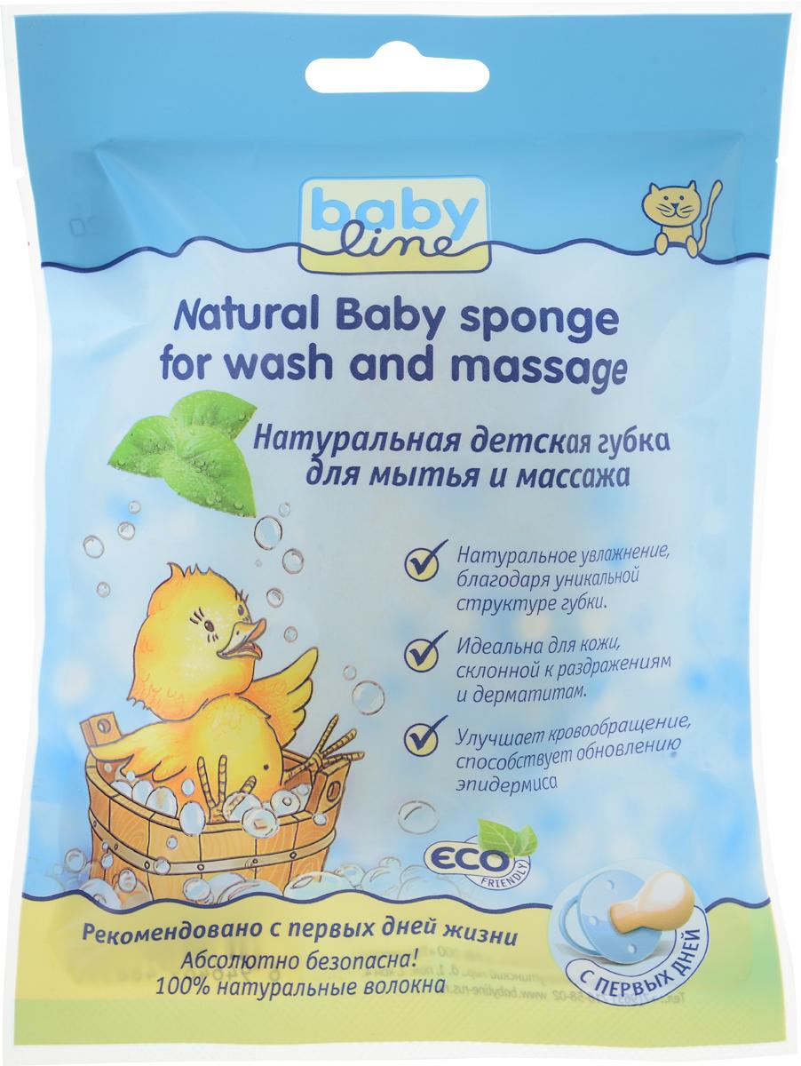 BabyLine Натуральная детская губка для мытья и массажаDB050Уважаемые клиенты!Обращаем ваше внимание на возможные изменения в дизайне упаковки. Качественные характеристики товара остаются неизменными. Поставка осуществляется в зависимости от наличия на складе.