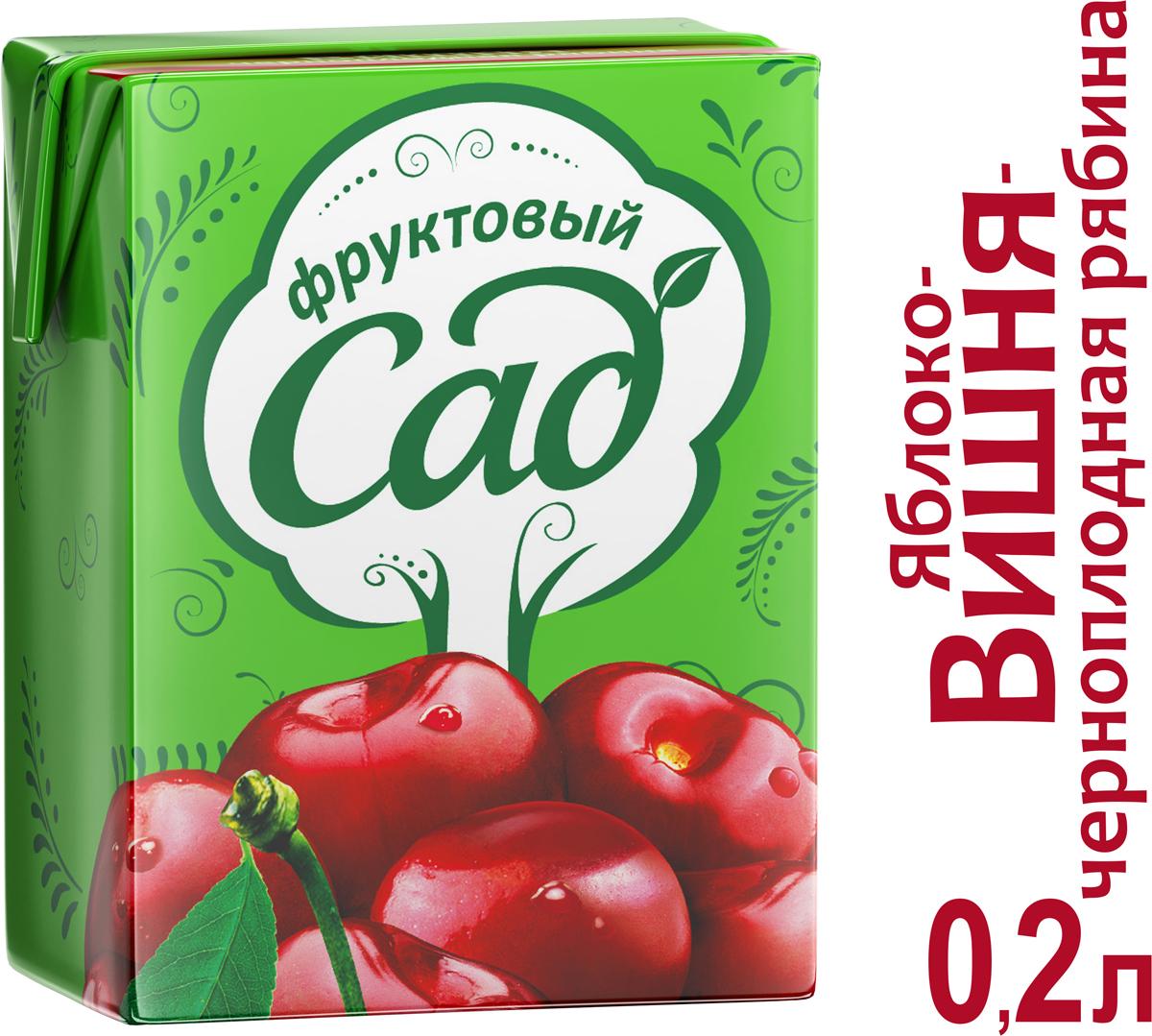 Фруктовый Сад Яблоко-Вишня-Черноплодная рябина нектар осветленный 0,2 л фруктовый сад ягоды морс 0 95 л