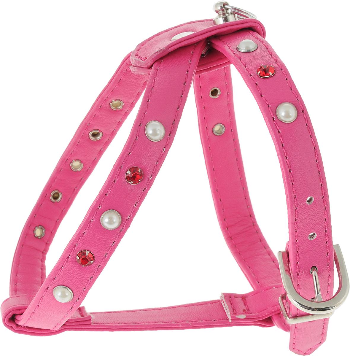 Шлейка для собак GLG, двойная, цвет: малиновый. Размер 2AM-DC043/AШлейка для собак GLG, изготовленная из искусственной кожи, подходит для собак малых и средних пород. Крепкие металлические элементы делают ее надежной и долговечной. Шлейка - это альтернатива ошейнику. Правильно подобранная шлейка не стесняет движения питомца, не натирает кожу, поэтому животное чувствует себя в ней уверенно и комфортно. Изделие отличается высоким качеством, удобством и универсальностью. Размер регулируется при помощи пряжек.Обхват шеи: 22 см. Обхват груди: 26-32 см.Ширина шлейки: 1,5 см.