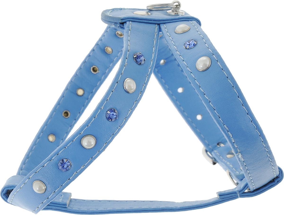 Шлейка для собак GLG, двойная, цвет: голубой. Размер 3AM-DC044/BШлейка для собак GLG, изготовленная из искусственной кожи, подходит для собак малых и средних пород. Крепкие металлические элементы делают ее надежной и долговечной. Шлейка - это альтернатива ошейнику. Правильно подобранная шлейка не стесняет движения питомца, не натирает кожу, поэтому животное чувствует себя в ней уверенно и комфортно. Изделие отличается высоким качеством, удобством и универсальностью. Размер регулируется при помощи пряжек.Обхват шеи: 28 см. Обхват груди: 28-35 см.Ширина шлейки: 1,5 см.
