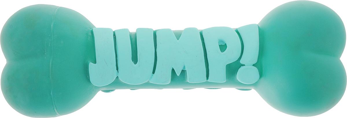 Игрушка для собак Camon Косточки Jump, цвет: зеленый, длина 23 смAH302/BИгрушка для собак Camon Косточки Jump изготовлена из качественных материалов. Изделие легко мыть и дезинфицировать.Игрушка станет отличным подарком активному питомцу, чьи хозяева заботятся о его здоровье и правильном развитии.