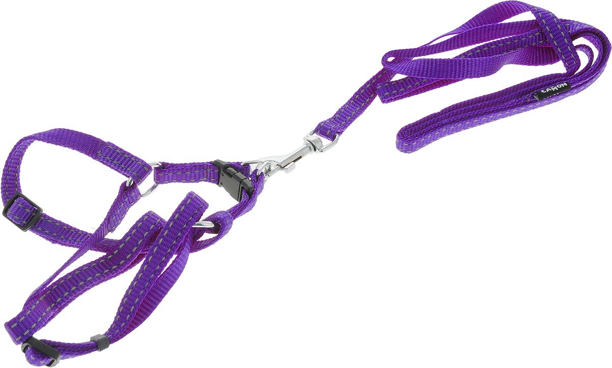 Шлейка для собак Camon, с поводком, нейлоновая, цвет: фиолетовый, 1 х 120 см. DC064/ADC064/A_ фиолетовыйШлейка для собак Camon изготовлена из прочного материала. Изделие выполнено с поводком,и имеет размеры: 1 х 120 см. Оснащена шлейка хромированной фурнитурой и прочными пластиковыми застежками.