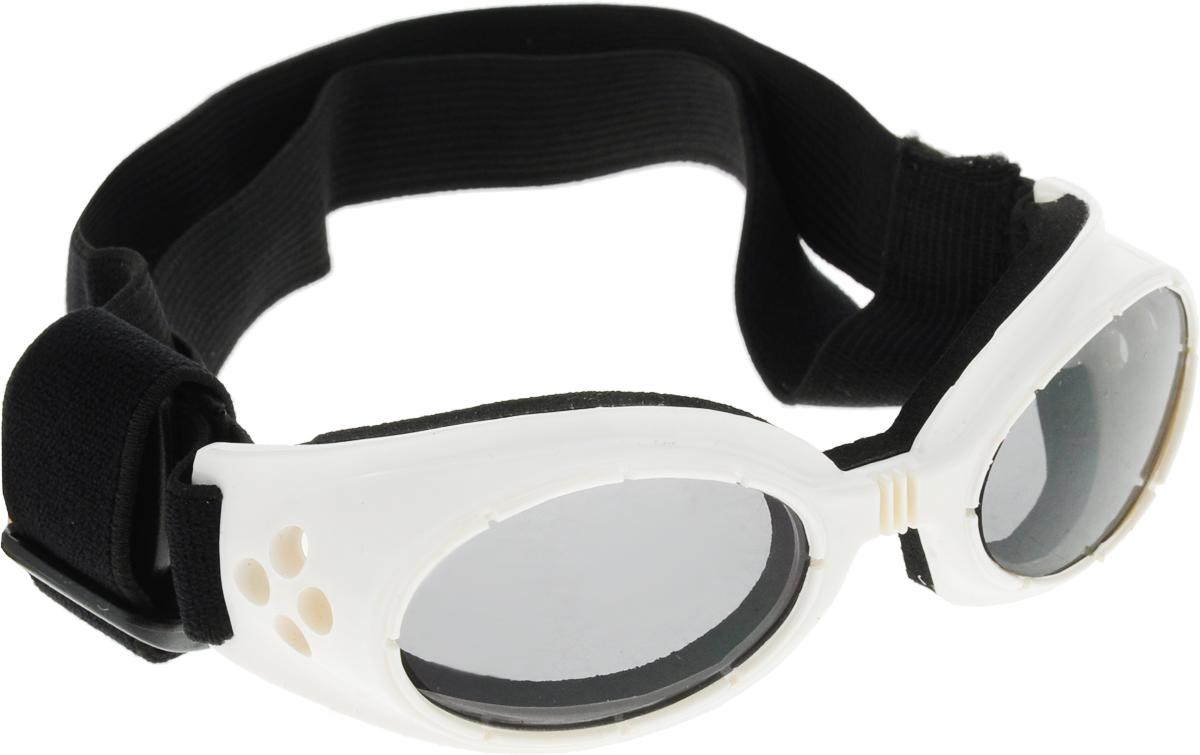 Очки для собак  Camon , затемненные, цвет: белый - Одежда, обувь, украшения