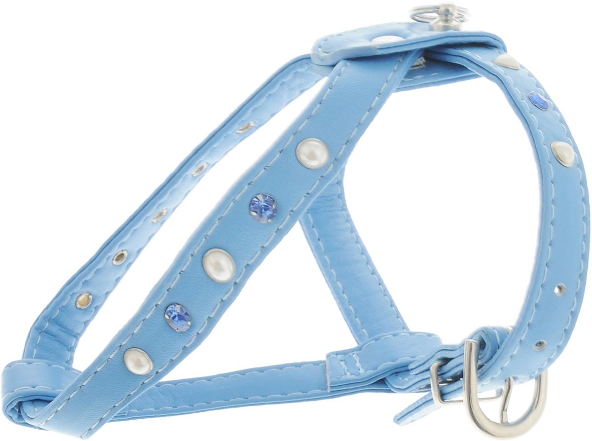 Шлейка для собак GLG, двойная, цвет: голубой. Размер 2AM-DC043/BШлейка для собак GLG, изготовленная из искусственной кожи, подходит для собак малых и средних пород. Крепкие металлические элементы делают ее надежной и долговечной. Шлейка - это альтернатива ошейнику. Правильно подобранная шлейка не стесняет движения питомца, не натирает кожу, поэтому животное чувствует себя в ней уверенно и комфортно. Изделие отличается высоким качеством, удобством и универсальностью. Размер регулируется при помощи пряжек.Ширина шлейки: 1,5 см.