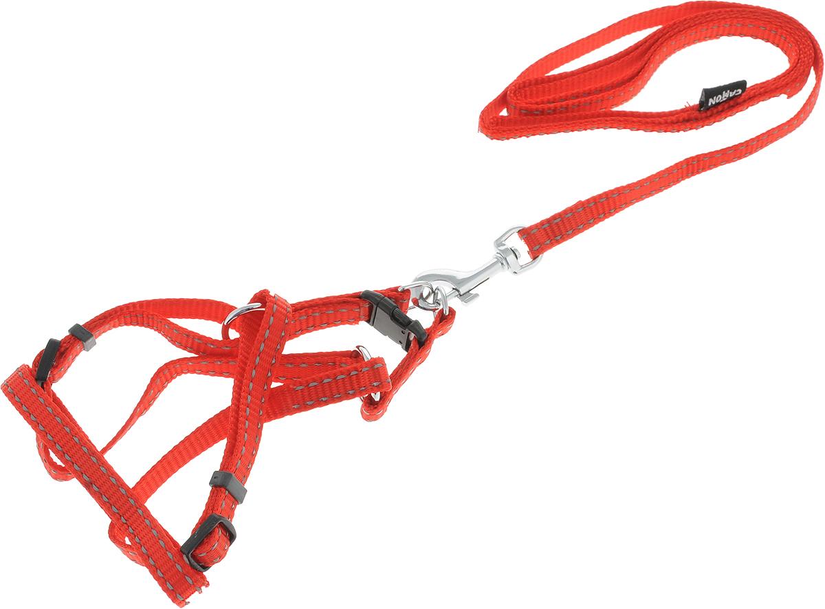 Шлейка для собак Camon, с поводком, цвет: красный, 1 х 120 см. DC064/ADC064/AШлейка для собак Camon изготовлена из прочного материала. Изделие выполнено с поводком,и имеет размеры: 1 х 120 см. Оснащена шлейка хромированной фурнитурой и прочными пластиковыми застежками.