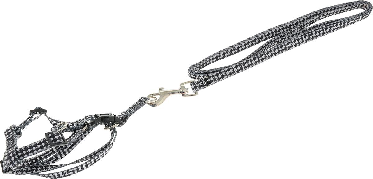 Шлейка для собак Camon, с поводком, 1 х 120 см. DC066/ADC066/AШлейка для собак Camon изготовлена из прочного материала. Изделие выполнено с поводком,и имеет размеры: 1 х 120 см. Оснащена шлейка хромированной фурнитурой и прочными пластиковыми застежками.