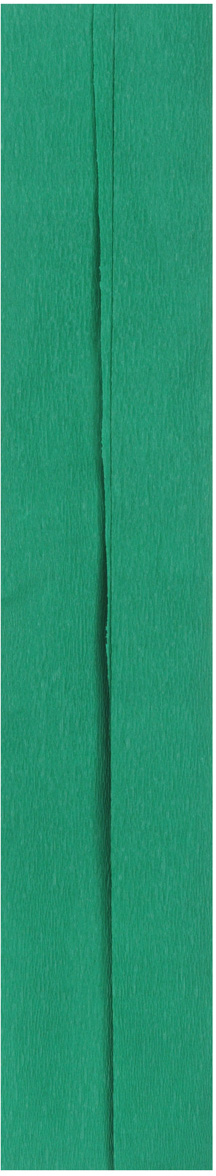 Бумага креповая Folia, цвет: темно-зеленый (41), 50 см x 2,5 м набор для создания фоторамки с декором часовой механизм folia 23336