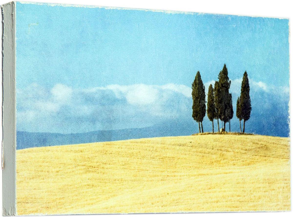 Картина Mister Poster Стильные деревья, 22 х 14,5 см0178-15-22Картина Mister Poster - это высококачественная репродукция на деревянной раме. Лицевая поверхность имитирует штукатурку или натуральный холст, края окрашены вручную специальным декоративным составом.Современные технологии, уникальное оборудование и оригинальные чернила, используемые при изготовлении, делают постер устойчивым к выцветанию, а также гарантируют стойкость к воздействию негативных внешних факторов. Интерьер дома и офиса, в котором находится человек, в значительной степени влияет на его настроение и работоспособность. Правильное оформление интерьера создает благоприятный психологический климат, улучшает настроение и мотивирует. Добавьте «красок» в ваш интерьер и, возможно, в вашу жизнь.
