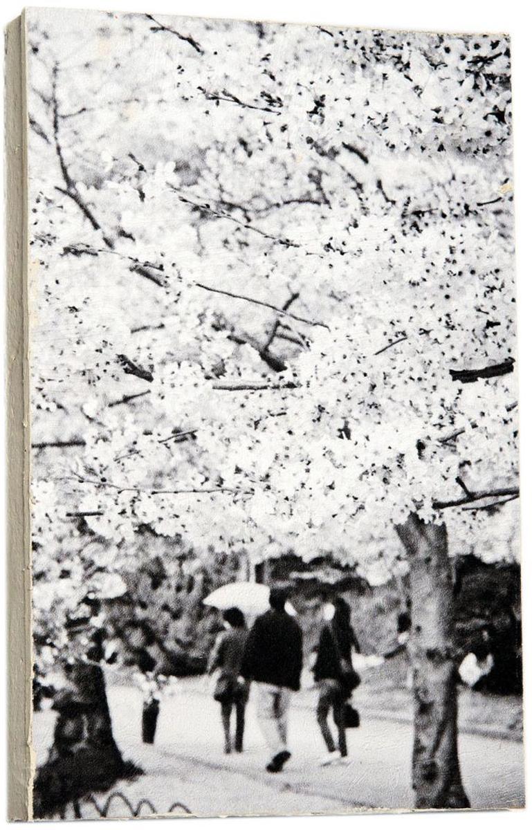 Картина Mister Poster Черно-белое дерево сакуры, 14,5 х 22 см0223-15-22Картина Mister Poster - это высококачественная репродукция на деревянной раме. Лицевая поверхность имитирует штукатурку или натуральный холст, края окрашены вручную специальным декоративным составом.Современные технологии, уникальное оборудование и оригинальные чернила, используемые при изготовлении, делают постер устойчивым к выцветанию, а также гарантируют стойкость к воздействию негативных внешних факторов. Интерьер дома и офиса, в котором находится человек, в значительной степени влияет на его настроение и работоспособность. Правильное оформление интерьера создает благоприятный психологический климат, улучшает настроение и мотивирует. Добавьте «красок» в ваш интерьер и, возможно, в вашу жизнь.
