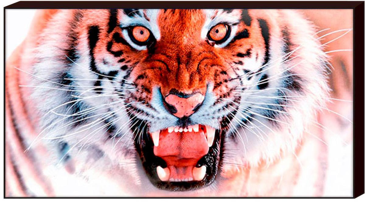 Декобокс Toplight Животные, 100 х 50 см. TL-D4008TL-D4008Декобокс Toplight Животные выполнен из бумаги и оргалита, рама из МДФ. Современные технологии, уникальное оборудование и цифровая печать, используемые в производстве, делают постер устойчивым к выцветанию и обеспечивают исключительное качество произведений.Благодаря наличию необходимых креплений в комплекте установка не займет много времени. Декобокс - это прекрасная возможность создать яркий акцент при оформлении любого помещения. Картина обязательно привлечет внимание и подарит немало приятных впечатлений своим обладателям. Правила ухода: можно протирать сухой, мягкой тканью.