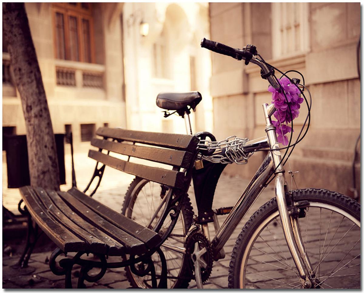 Канвас Idea Велосипед, 50 х 40 смIDEA CT3-04Канвас - это ткань с художественной фотопечатью, натянутая на деревянный каркас. Такое изделие - оригинальный декоративный элемент, способный преобразить любой интерьер. Картина оформлена красочным изображением велосипеда, привязанного к скамейке. С задней стороны имеется петелька для подвешивания к стене.Стильный, современный дизайн, а также яркие и насыщенные цвета сделают эту картину прекрасным дополнением интерьера комнаты.