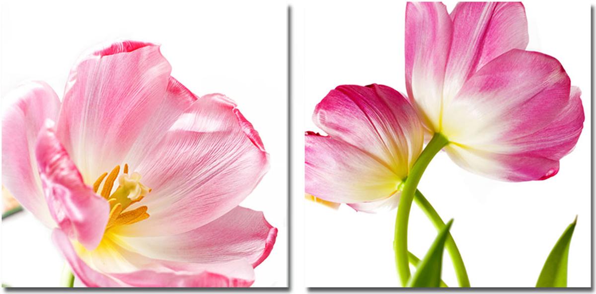 Канвас диптих Idea Розовые цветы, 100 х 50 см, 2 шт невидимка для волос funny bunny розовые цветы 2 шт