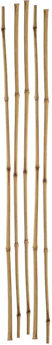 Опора для растений Green Apple, бамбуковая, диаметр 1 см, длина 75 см, 5 штGBS-10-75Опора Green Apple изготовлена из натуральных стеблей бамбука, экологически чистого материала устойчивого к перепадам температуры. Не расслаивается, не выгорает на солнце, не боится влаги. Она используется для поддержки как садовых, так и комнатных растений. Диаметр стебля: 1 см. Комплектация: 5 шт.