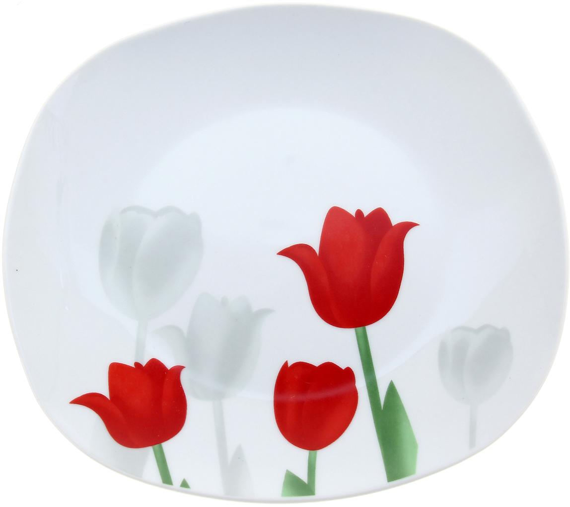 Тарелка обеденная Доляна Тюльпаны, диаметр 24 см836454Причудливая гжельская роспись, нежные рисунки акварелью, яркие цветочные мотивы – на нашем сайте вы обнаружите богатейшую коллекцию утонченной керамической посуды для подлинных ценителей бытовой красоты. Тарелка обеденная d=24 см Тюльпаны входит в необыкновенно изысканную серию столовой керамики. Благодаря эксплуатационным достоинствам и особой энергетике древнего материала вместо усталости от домашних хлопот вы будете ощущать максимальный комфорт и эстетическое удовольствие. Подарите себе ежедневный праздник с яркой и практичной посудой от Сима-ленд!