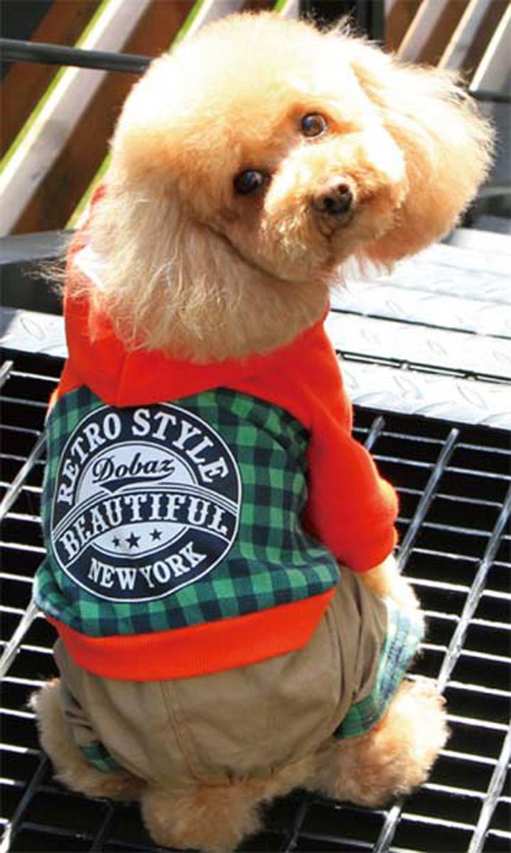 Комбинезон для собак Dobaz, цвет: зеленый, черный. ДА13049АХЛ. Размер XL комбинезон для собак dobaz цвет оранжевый черный да13049сл размер l