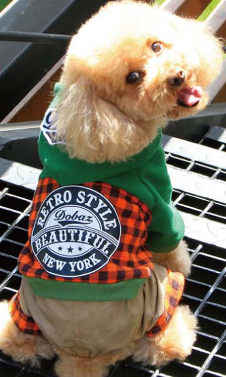 Комбинезон для собак Dobaz, цвет: оранжевый, черный. ДА13049СХЛ. Размер XL комбинезон для собак dobaz цвет оранжевый черный да13049сл размер l