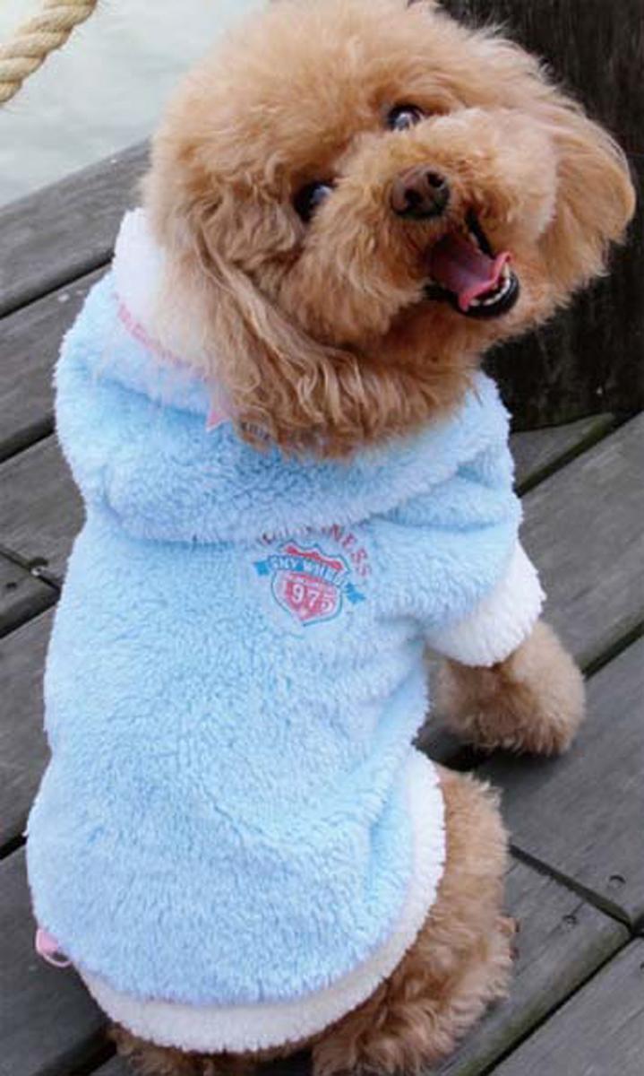 Куртка для собак Dobaz, цвет: голубой. ДА13059СХЛ. Размер XLДА13059СХЛФантастически мягкая и невероятно уютная куртка Dobaz для собак. На спинке изделие декорировано вышивкой.Обхват шеи: 34 см.Обхват груди: 54 см.Длина спинки: 36 см.Одежда для собак: нужна ли она и как её выбрать. Статья OZON Гид