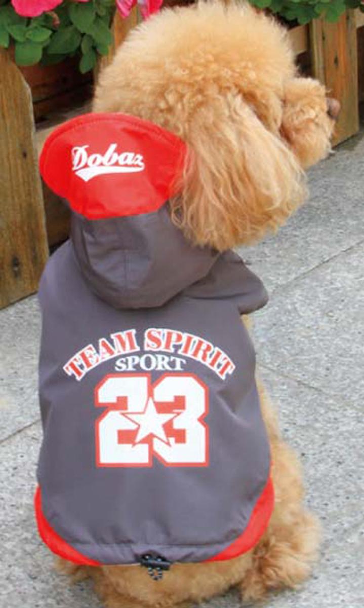 Куртка для собак Dobaz Team Spirit, цвет: темно-серый. ДА13076СХЛ. Размер XLДА13076СХЛСпортивная куртка Dobaz Team Spirit с капюшоном и оригинальной накаткой на спинке. Предназначена для использования в прохладную, влажную погоду.Обхват шеи: 34 см.Обхват груди: 54 см.Длина спинки: 36 см.Одежда для собак: нужна ли она и как её выбрать. Статья OZON Гид