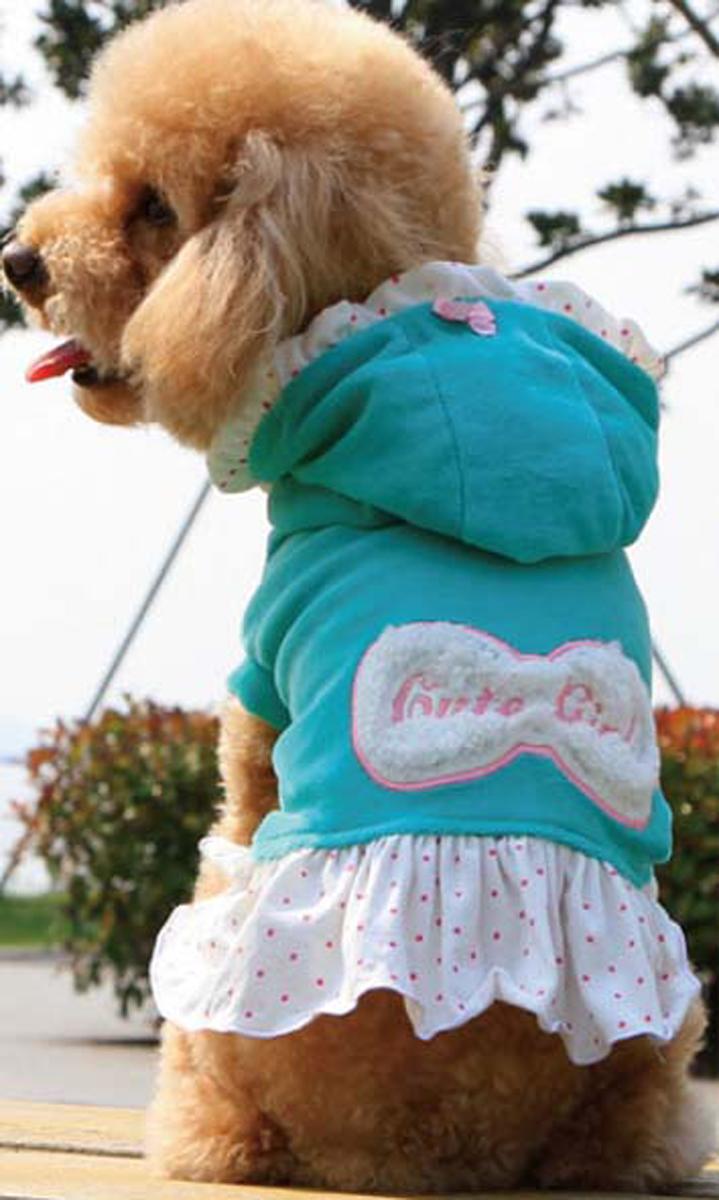 Платье для собак Dobaz, утепленное, цвет: голубой. ДА13082БХС. Размер XSДА13082БХСОригинальное стильное платье Dobaz для собаки - очень теплое, идеально подходит для прогулок в прохладную погоду с вашей маленькой модницей. Аппликация в виде банта на спинке. Капюшон оторочен рюшами в цвет юбочки. Обхват шеи: 20 см.Обхват груди: 31 см.Длина спинки: 21 см.Одежда для собак: нужна ли она и как её выбрать. Статья OZON Гид