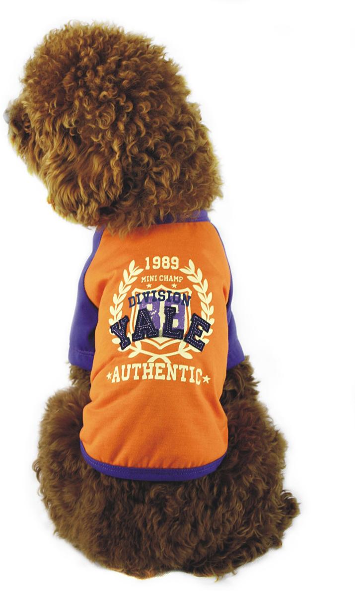 Майка для собак Dobaz, унисекс, цвет: оранжевый, синий. ДГ1101БХЛ. Размер XLДГ1101БХЛМайка трикотажная Dobaz выполнена из 100% хлопка. Модель имеет синие рукава, а спинка дополнена оригинальным рисунком.Обхват шеи: 34 см.Обхват груди: 54 см.Длина спинки: 36 см.Одежда для собак: нужна ли она и как её выбрать. Статья OZON Гид