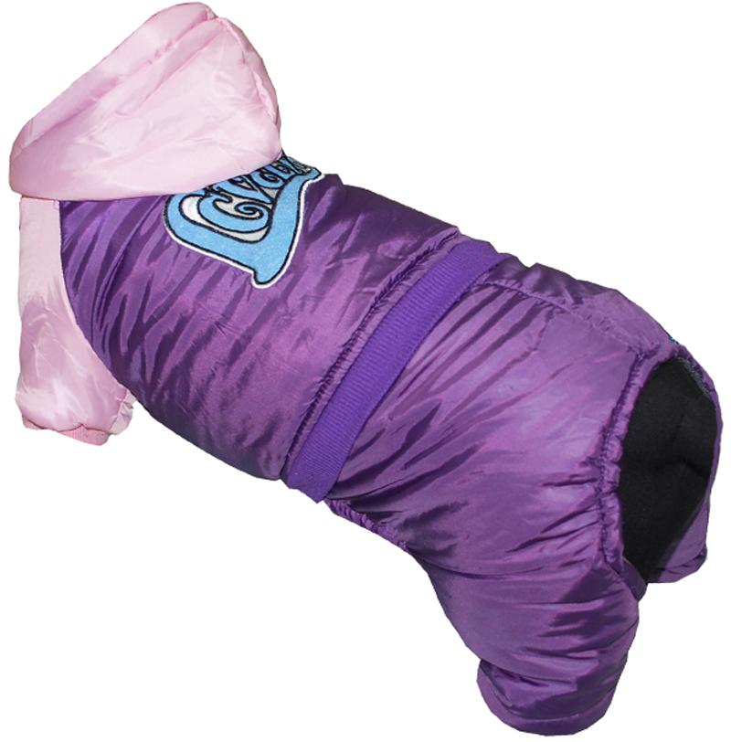 Комбинезон для собак Pets INN LOVELY, цвет: фиолетовый, розовый. Петс03ХС. Размер XSПетс03ХСКомбинезон с капюшоном Pets INN подходит для длительных прогулок. Комфортный и практичный. Обхват шеи: 22-24 см.Обхват груди: 27-33 см.Длина спинки: 20 см.Одежда для собак: нужна ли она и как её выбрать. Статья OZON Гид