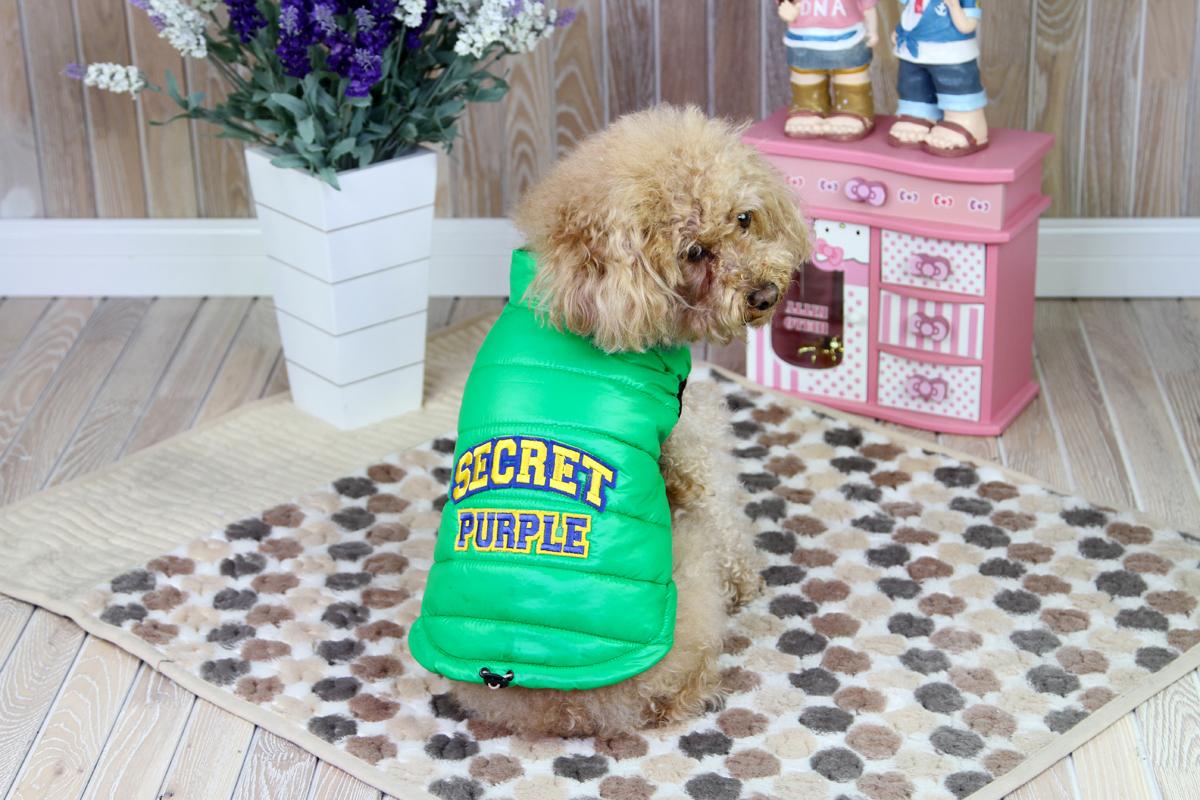Куртка для собак Dobaz, цвет: зеленый. ДА1207АХС. Размер XSДА1207АХСКуртка для собак Dobaz без рукавов дополнена кулиской по нижнему краю. На спинке изделие оформлено надписью . Обхват шеи: 20 см.Обхват груди: 31 см.Длина спинки: 21 см.Одежда для собак: нужна ли она и как её выбрать. Статья OZON Гид