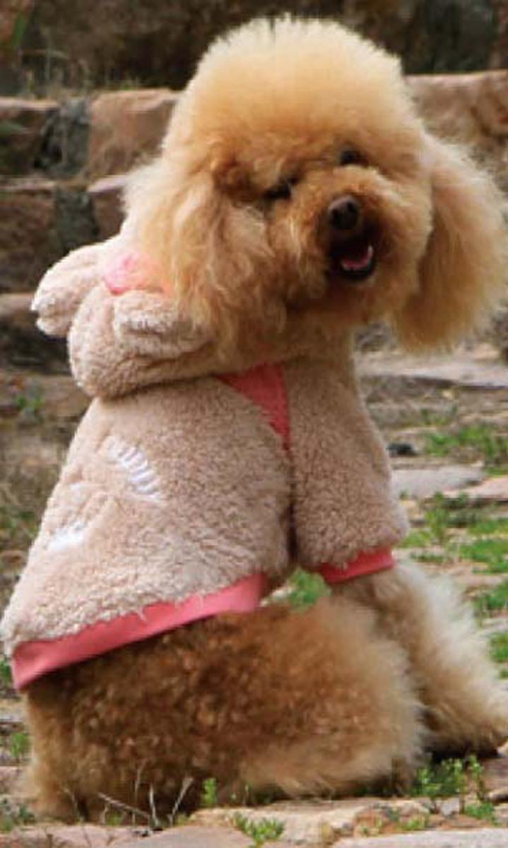 Куртка для собак Dobaz, цвет: темно-бежевый. ДА13053АЛ. Размер LДА13053АЛКрасивая куртка для собак Dobaz вполнена из длинноворсового флиса. Мягкая, очень приятная на ощупь. Мягкая подкладка. На спинке красивая вышивка, на ушке бант. Капюшон с подкладкой и ушками.Оригинальная, удобная одежда. Не сковывает движения.Обхват шеи: 31 см.Обхват груди: 48 см.Длина спинки: 33 см.Одежда для собак: нужна ли она и как её выбрать. Статья OZON Гид