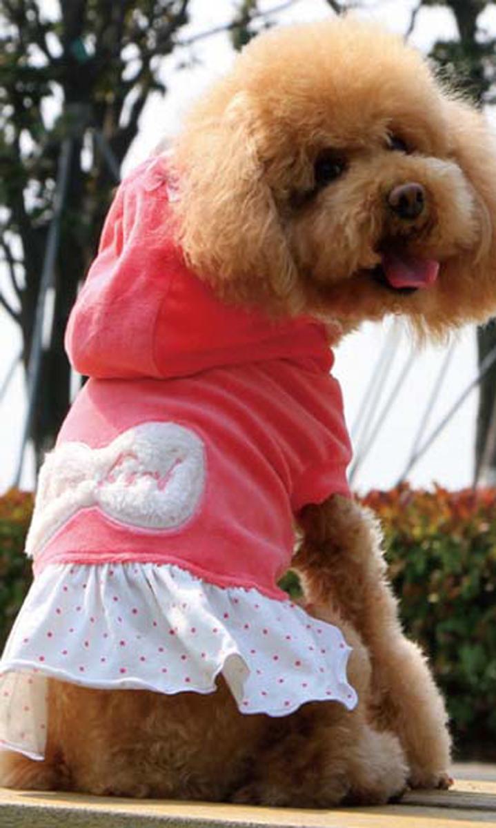 Платье для собак Dobaz, утепленное, цвет: розовый. ДА13082АС. Размер SДА13082АСОригинальное стильное платье Dobaz для собаки - очень теплое, идеально подходит для прогулок в прохладную погоду с вашей маленькой модницей. Аппликация в виде банта на спинке. Капюшон оторочен рюшами в цвет юбочки.Обхват шеи: 23 см.Обхват груди: 36 см.Длина спинки: 23 см.Одежда для собак: нужна ли она и как её выбрать. Статья OZON Гид