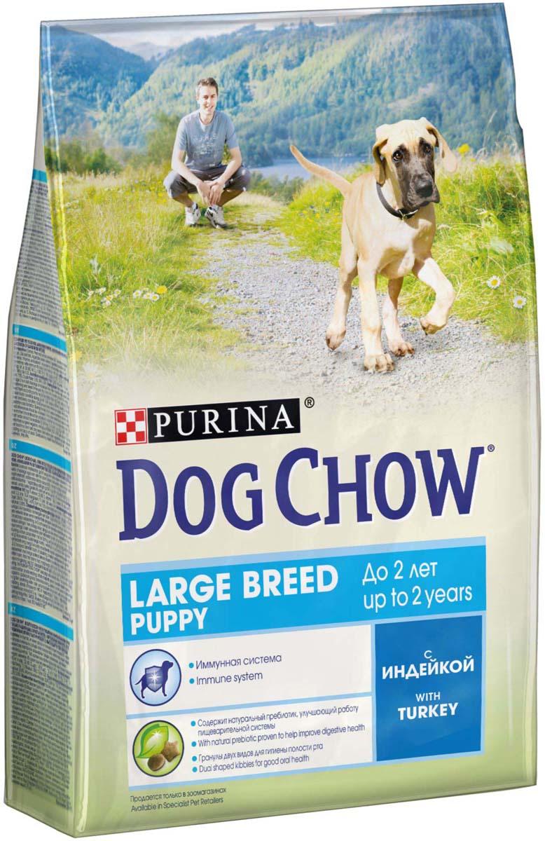 Сухой корм Dog Chow для щенков крупных пород до 2 лет, с индейкой, 2,5 кг12308766Сухой корм Purina Dog Chow для щенков крупных пород до 2 лет, с индейкой. Придерживайтесь норм, рекомендованных в таблице, и не перекармливайте щенка, чтобы в процессе роста ваш питомец оставался в оптимальной физической форме.МЕ/кг: витамин А: 22 600, витамин D3: 1 300, витамин Е: 105. мг/кг: железо: 93,9, йод: 2,3; медь: 10,4; марганец: 7,1; цинк: 168,6; селен: 0,23.белок: 28%жир: 12%сырая зола: 7,5%сырая клетчатка: 2,5%докозагексаеновая кислота: 0,05%Товар сертифицирован.