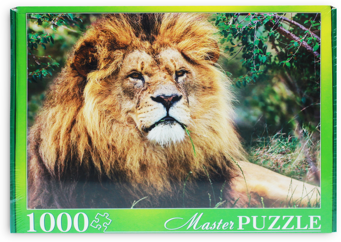 Masterpuzzle Пазл Африканский лев