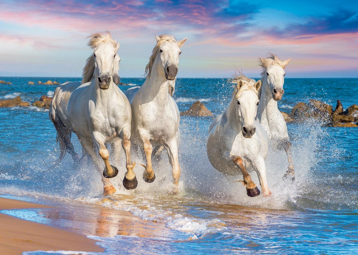 KonigspuzzleПазл Дикие лошади Konigspuzzle