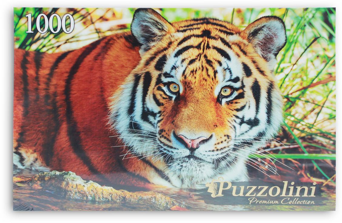 Puzzolini Пазл Амурский тигр