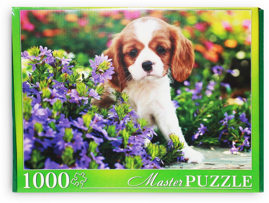 Masterpuzzle Пазл Милый спаниель