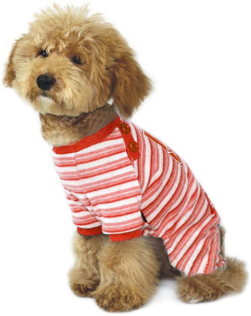 Комбинезон для собак Dobaz, цвет: розовый, голубой. ДА1016АХХЛ. Размер XXLДА1016АХХЛКомбинезон трикотажный Dobaz выполнен из хлопка с полосатым принтом. Обхват шеи: 40 см.Обхват груди: 60 см.Длина спинки: 41 см.Одежда для собак: нужна ли она и как её выбрать. Статья OZON Гид