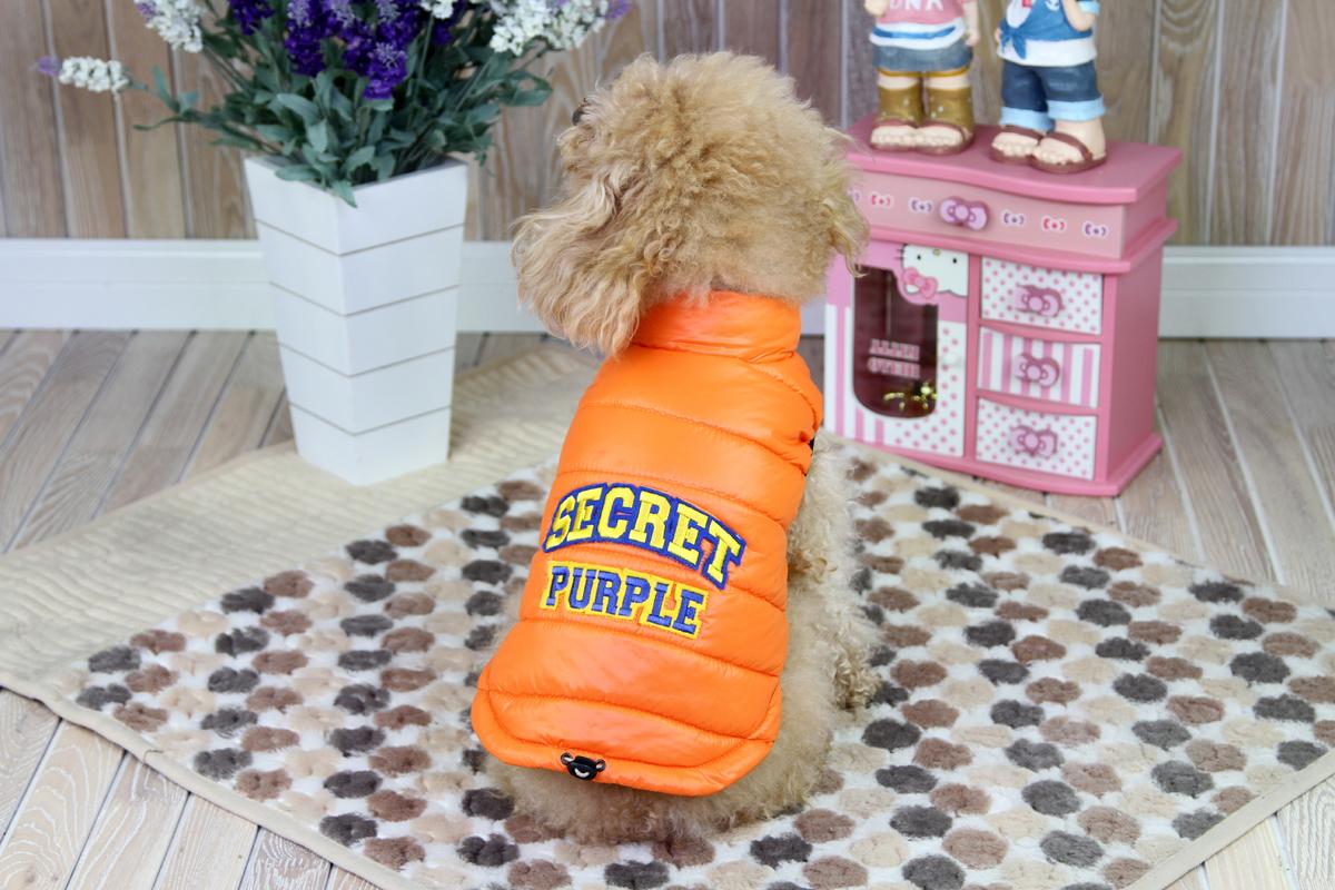 Куртка для собак Dobaz, цвет: оранжевый. ДА1207ВХС. Размер XSДА1207ВХСКуртка для собак Dobaz без рукавов с застежкой на заклепки. На спинке изделие оформлено нашивкой в виде надписи.Обхват шеи: 20 см.Обхват груди: 31 см.Длина спинки: 21 см.Одежда для собак: нужна ли она и как её выбрать. Статья OZON Гид