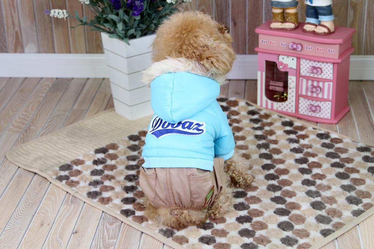 цены Комбинезон для собак