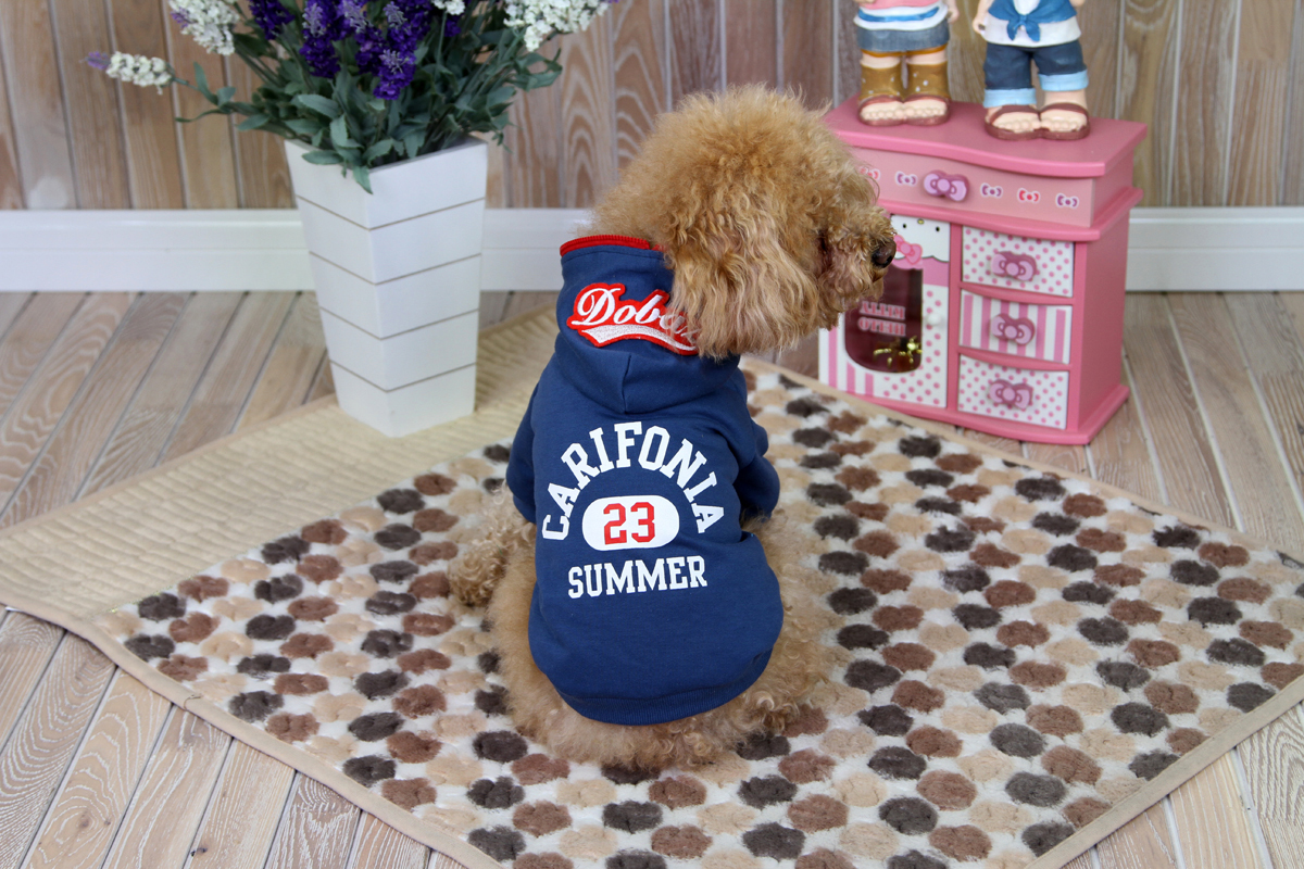 Толстовка для собак Dobaz Carifonia, цвет: синий. ДА1209СХС. Размер XSДА1209СХСТеплая нарядная трикотажная толстовка для собак Dobaz Carifonia с красивой отделкой на спинке.Обхват шеи: 20 см.Обхват груди: 31 см.Длина спинки: 21 см.Одежда для собак: нужна ли она и как её выбрать. Статья OZON Гид