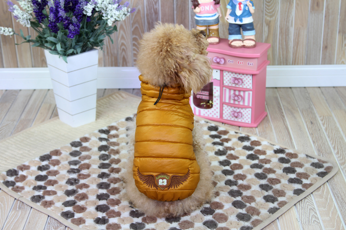 Куртка для собак Dobaz, цвет: золотой. ДА1212ВХЛ. Размер XL куртка для собак dobaz цвет голубой черный да1222схл размер xl