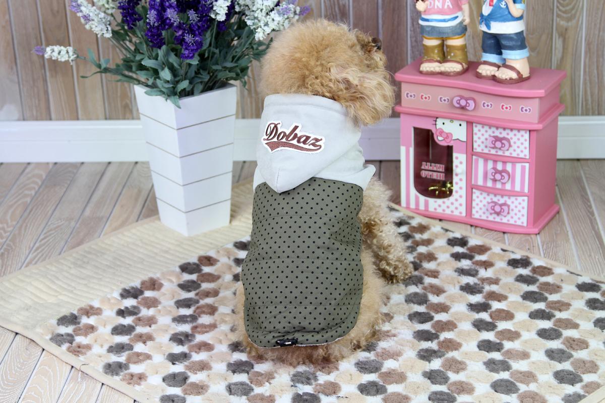 Куртка для собак Dobaz, цвет: серый, черный. ДА1222ВХС. Размер XSДА1222ВХСОригинальная симпатичная курточка для собак Dobaz выполнена из мягкой ткани с расцветкой в горошек. Предназначена для использования в сухую, холодную и ветреную погоду. Обхват шеи: 20 см.Обхват груди: 31 см.Длина спинки: 21 см.Одежда для собак: нужна ли она и как её выбрать. Статья OZON Гид