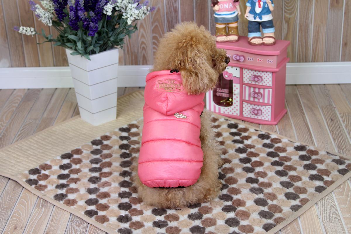 Куртка для собак Dobaz, цвет: розовый. ДА1225СХС. Размер XSДА1225СХСКуртка стеганая Dobaz без рукавов дополненакапюшоном. Изделие выполнено из непромокаемого материала. Обхват шеи: 20 см.Обхват груди: 31 см.Длина спинки: 21 см.Одежда для собак: нужна ли она и как её выбрать. Статья OZON Гид