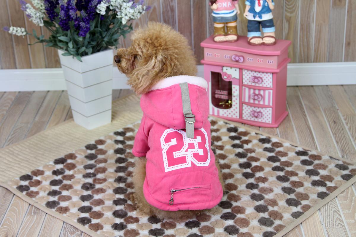 Куртка для собак Dobaz, цвет: розовый. ДА1229СХЛ. Размер XLДА1229СХЛКуртка для собак Dobaz изготовлена из приятной ткани и имеет меховую подкладку. Идеальна для согревания мышц до и во время тренировки. На спинке есть кармашек на молнии для мелочей.Обхват шеи: 34 см.Обхват груди: 54 см.Длина спинки: 36 см.Одежда для собак: нужна ли она и как её выбрать. Статья OZON Гид