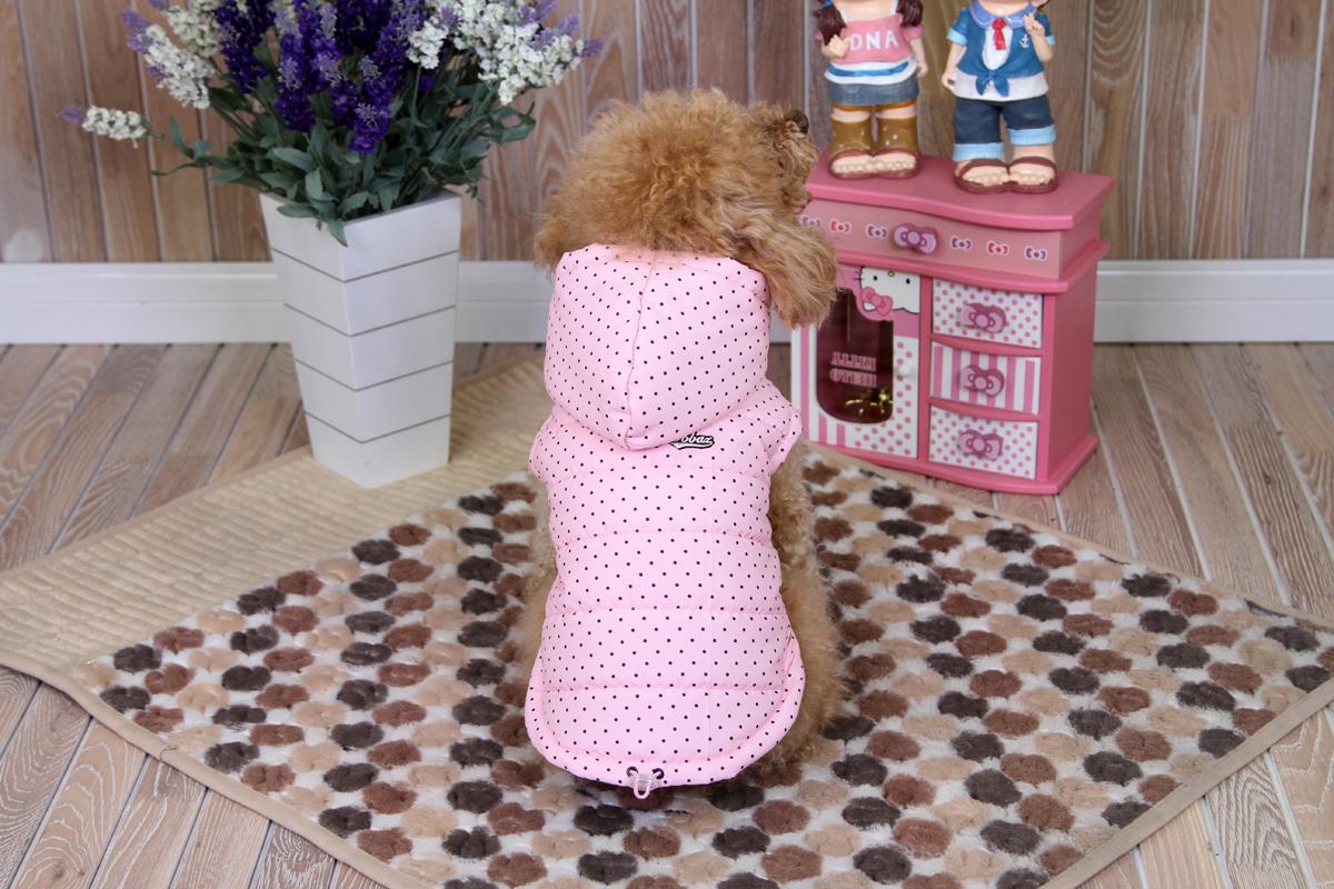 Куртка для собак Dobaz, цвет: розовый, черный. ДА1233ВХЛ. Размер XLДА1233ВХЛКуртка для собак Dobaz выполнена из мягкой ткани с расцветкой в горошек. Предназначена для использования в сухую, холодную и ветреную погоду. Она идеальна для согревания мышц до и во время тренировки. Обхват шеи: 34 см.Обхват груди: 54 см.Длина спинки: 36 см.Одежда для собак: нужна ли она и как её выбрать. Статья OZON Гид