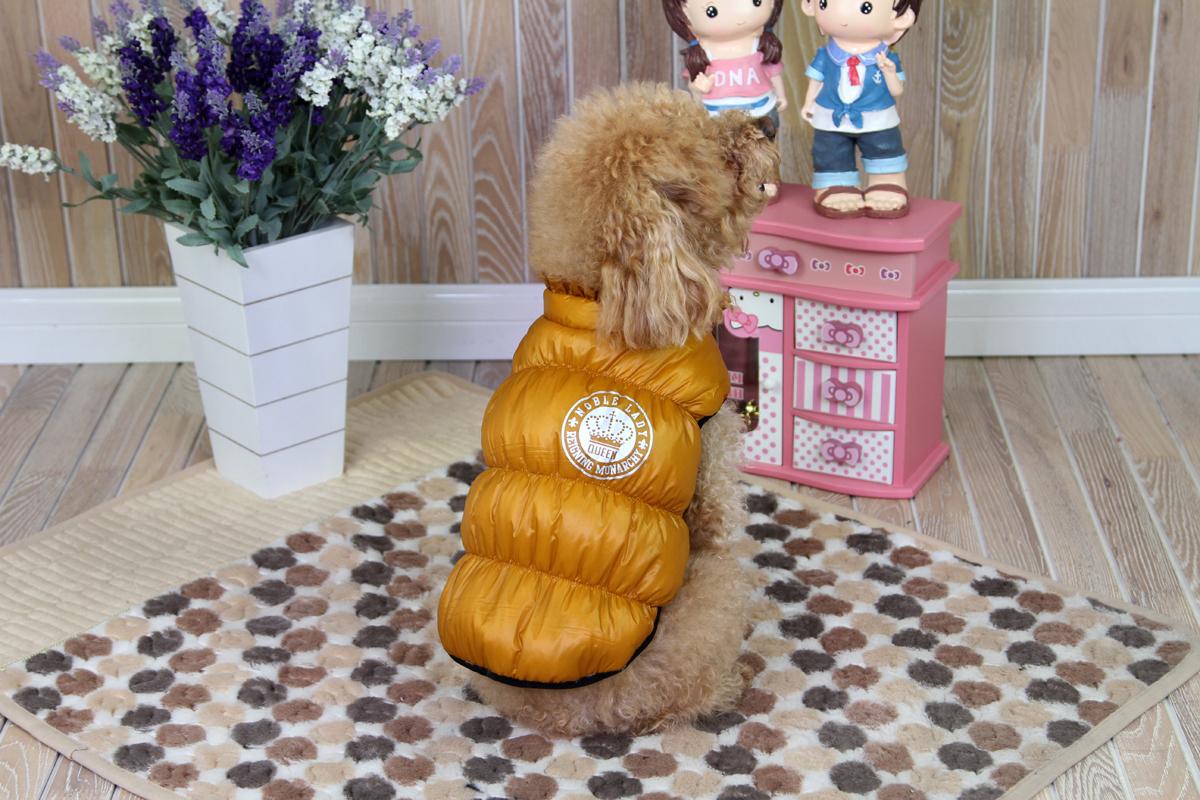 Куртка для собак Dobaz, цвет: золотой. ДА1234АХЛ. Размер XL куртка для собак dobaz цвет голубой черный да1222схл размер xl