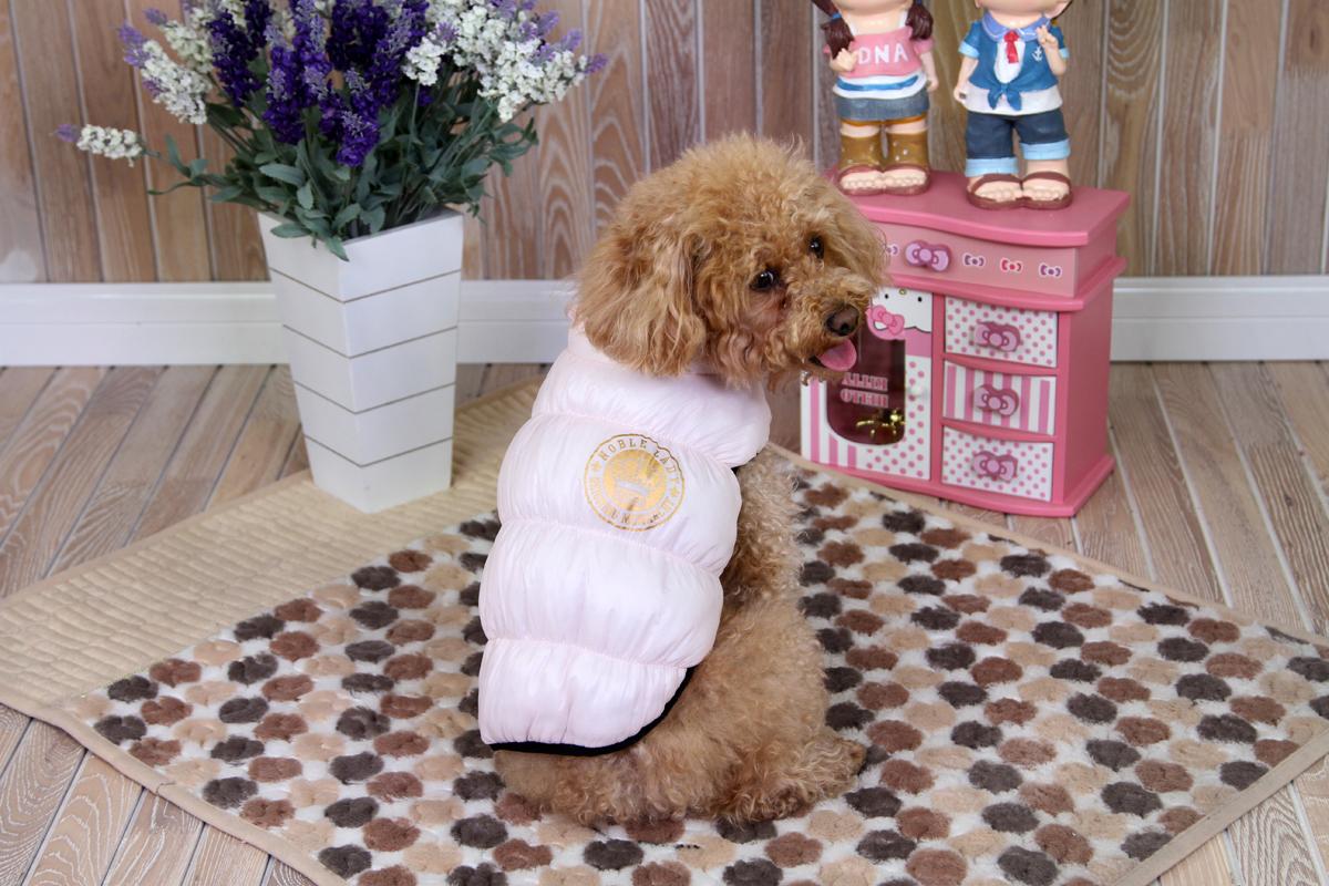 Куртка для собак Dobaz, цвет: розовый. ДА1234ВС. Размер SДА1234ВСКуртка Dobaz защищает все главные группы мышц собаки. Материал комфортабельно гибок, что очень подходит собаке, не привыкшей носить одежду. Куртка предназначена для холодной ветреной погоды.Обхват шеи: 23 см.Обхват груди: 36 см.Длина спинки: 23 см.Одежда для собак: нужна ли она и как её выбрать. Статья OZON Гид
