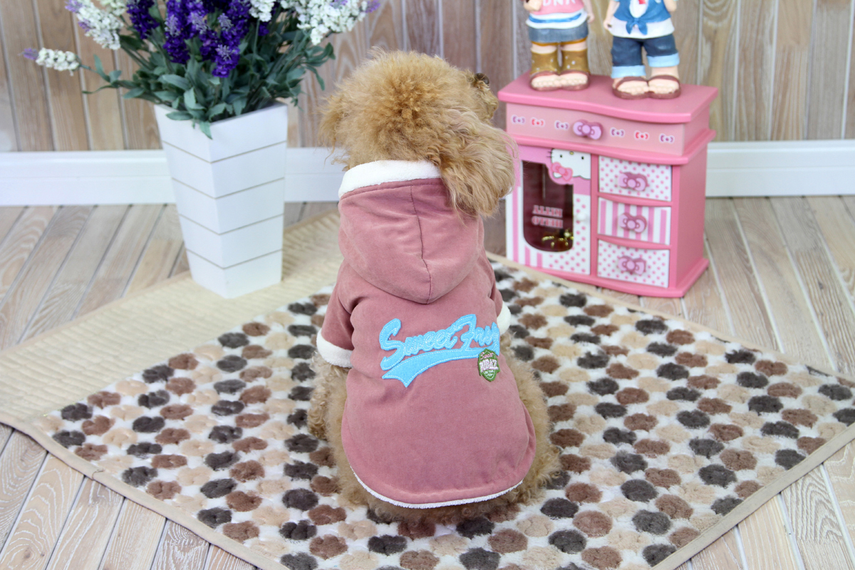 Куртка для собак Dobaz, цвет: темно-розовый. ДА1235СХЛ. Размер XLДА1235СХЛТеплая зимняя куртка Dobaz для вашего питомца обладает наилучшей теплоизоляционной способностью. Отлично защищает собаку от холода и ветра. Обхват шеи: 34 см.Обхват груди: 54 см.Длина спинки: 36 см.Одежда для собак: нужна ли она и как её выбрать. Статья OZON Гид