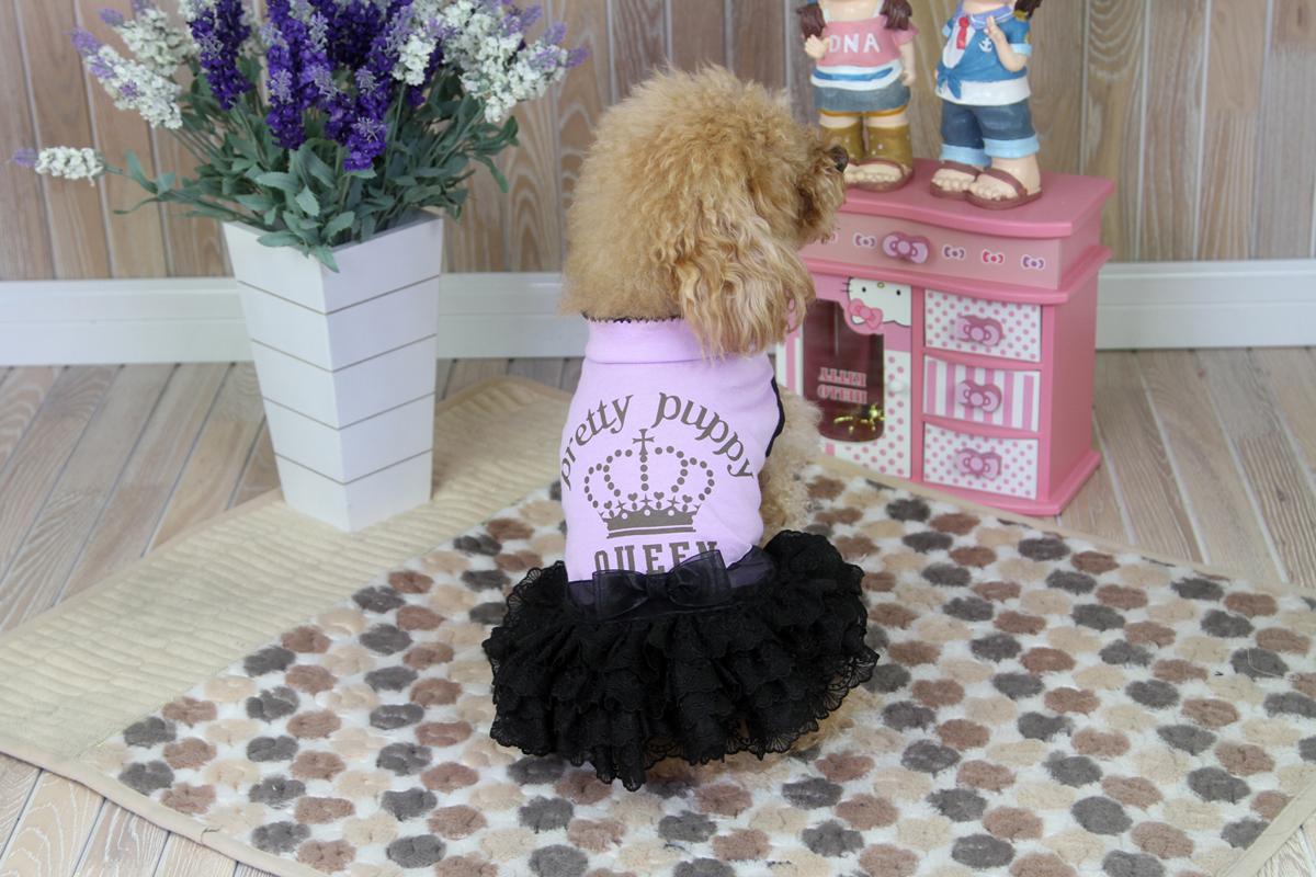 Платье-пачка для собак Dobaz, цвет: сиреневый, черный. ДА1239СХЛ. Размер XLДА1239СХЛПлатье для собак с юбкой-пачкой Dobaz отлично подойдет для вашей маленькой модницы. Спинка дополнена надписями и бантиком. Обхват шеи: 34 см.Обхват груди: 54 см.Длина спинки: 36 см.Одежда для собак: нужна ли она и как её выбрать. Статья OZON Гид