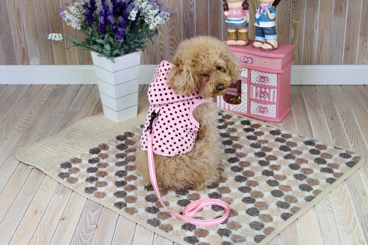 Толстовка для собак Dobaz, утепленная, для девочки, цвет: розовый, белый. ДН1209ВЛ. Размер LДН1209ВЛМягкая теплая меховая толстовка Dobaz предназначена для использования в прохладную ветреную погоду. Отлично защищает собаку от холода. Толстовку можно быстро надеть и снять, что делает ее идеальной для согревания активных мышц собак до и после прогулки или тренировки.Обхват шеи: 31 см.Обхват груди: 48 см.Длина спинки: 33 см.Одежда для собак: нужна ли она и как её выбрать. Статья OZON Гид