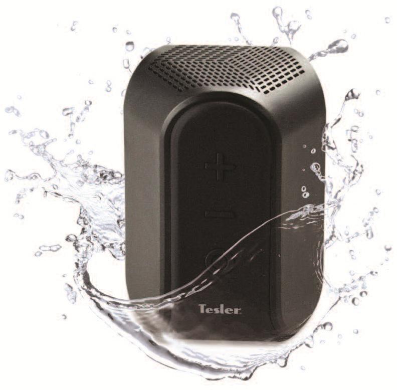 Tesler PSS-222, Black портативная акустическая система